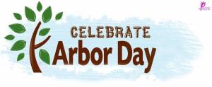 Arbor-DAy-Celebration-2014-Poster